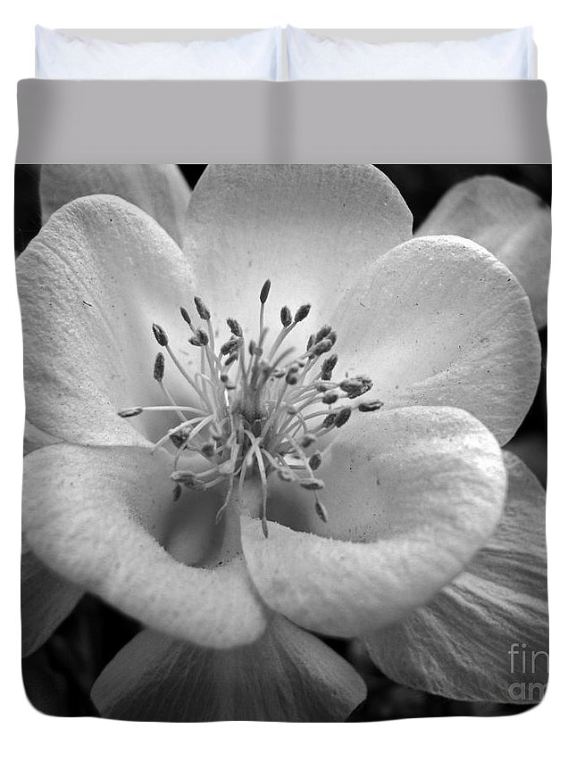 Flowers Duvet Cover featuring the photograph Columbine by Amanda Barcon