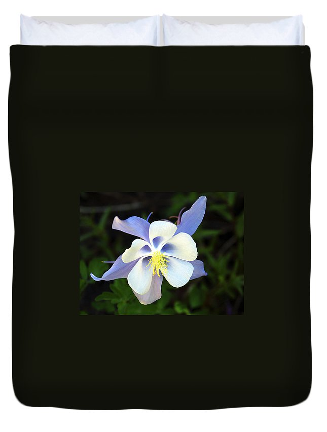 Columbine Duvet Cover featuring the photograph Columbine Colorado State Flower by Marilyn Hunt