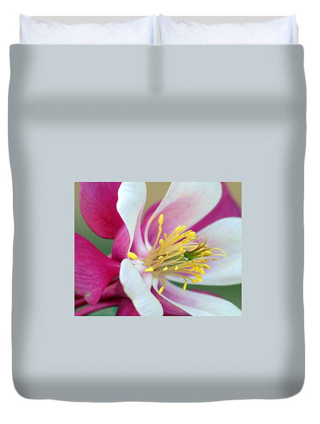 Columbine Duvet Cover featuring the photograph Columbine Flower 2 by Amy Fose