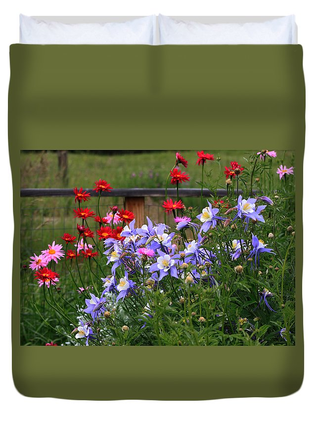 Columbine Duvet Cover featuring the photograph Columbines And Daisies by Gerri Duke