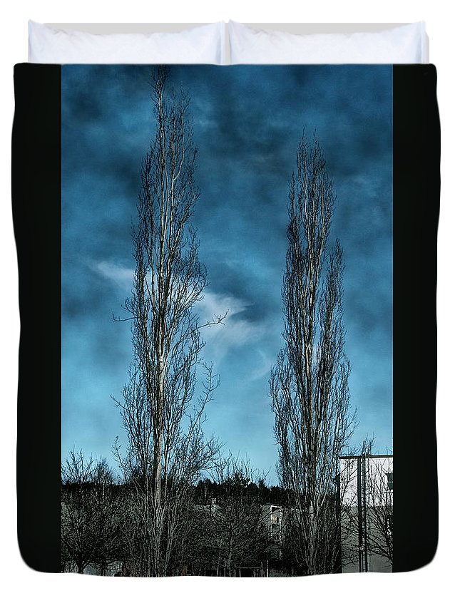 Duvet Cover featuring the photograph Column Aspen 1 by Esko Lindell