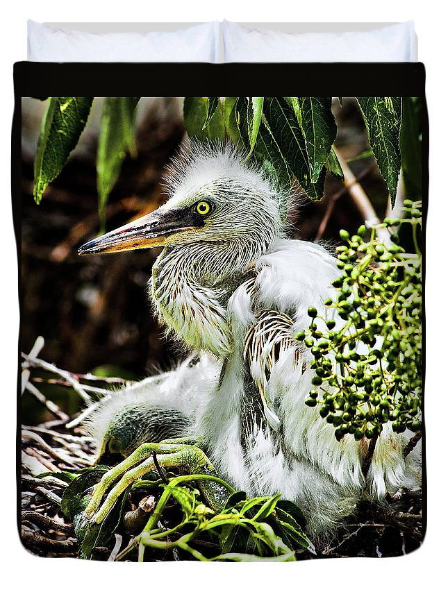 Egret Duvet Cover featuring the photograph Come On Feathers by Christopher Holmes