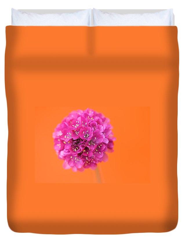 Orange Duvet Cover featuring the photograph Comic Book Colour by Lisa Knechtel