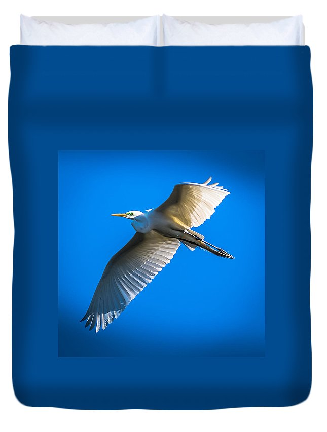 Exotic Birds Duvet Cover featuring the photograph Coming Home by Larry Jones