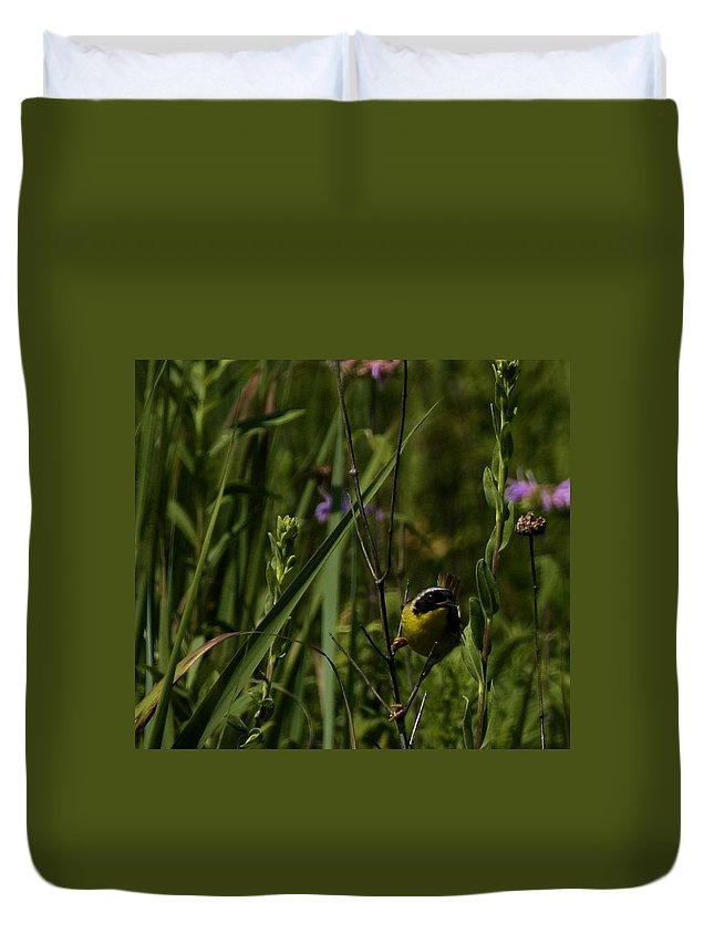Nature Duvet Cover featuring the photograph Common Yellow Throat by Eric Noa