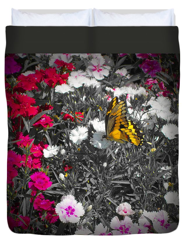 Butterfly Duvet Cover featuring the photograph Competing Colors by Douglas Barnard