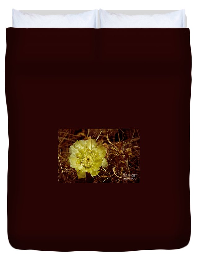 Flower Duvet Cover featuring the photograph Complementary Colors by Bob Mintie