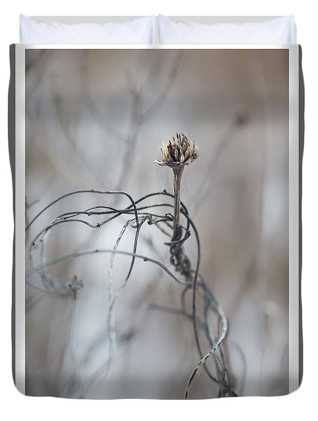 Plants Duvet Cover featuring the photograph Complicated Means Not Single by Mary Konczyk
