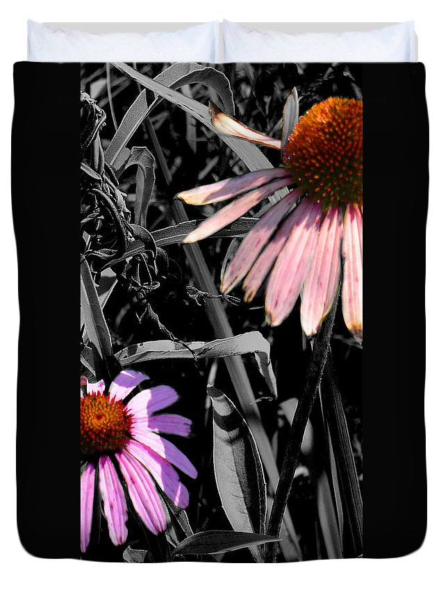 Purple Cone Flower Duvet Cover featuring the photograph Cone Flower Tapestry by Steve Karol