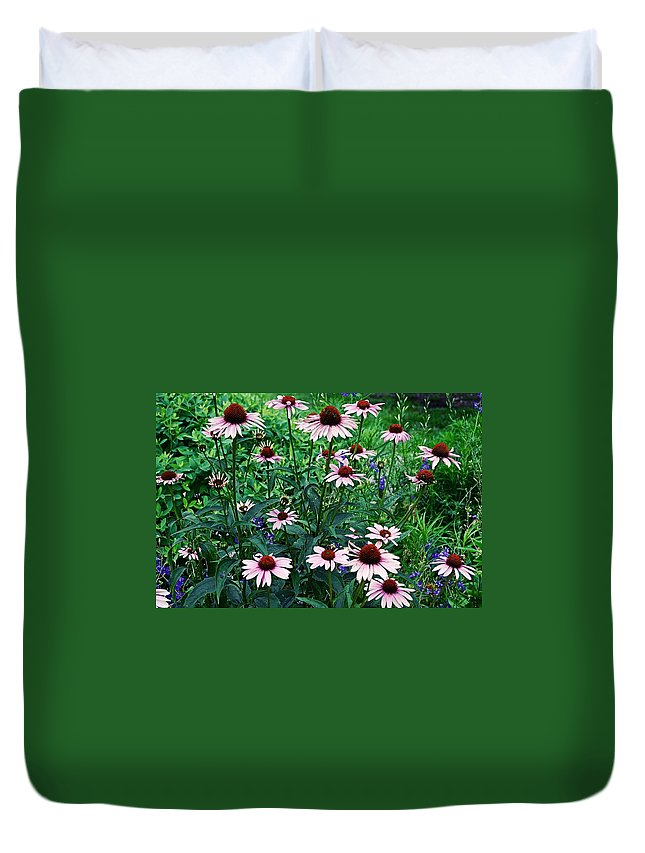 Coneflowers Duvet Cover featuring the photograph Coneflower Garden by James DeFazio