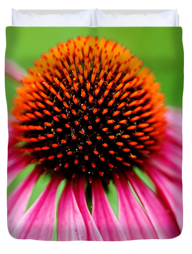 Purple Coneflower Duvet Cover featuring the photograph Coneflower Macro by Debbie Oppermann