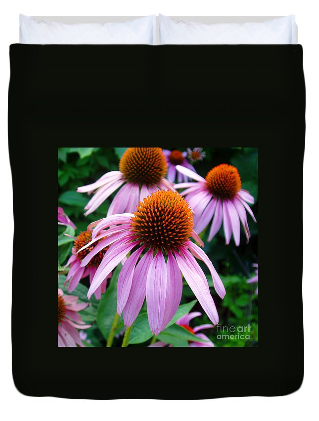 Coneflowers Duvet Cover featuring the photograph Three Coneflowers by Nancy Mueller