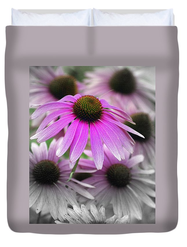 Flowers Duvet Cover featuring the photograph Coneflowers by Marty Koch