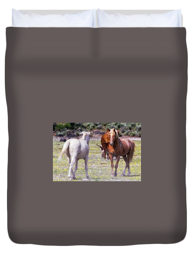 Wildhorses Duvet Cover featuring the photograph Confrontation by Belinda Greb