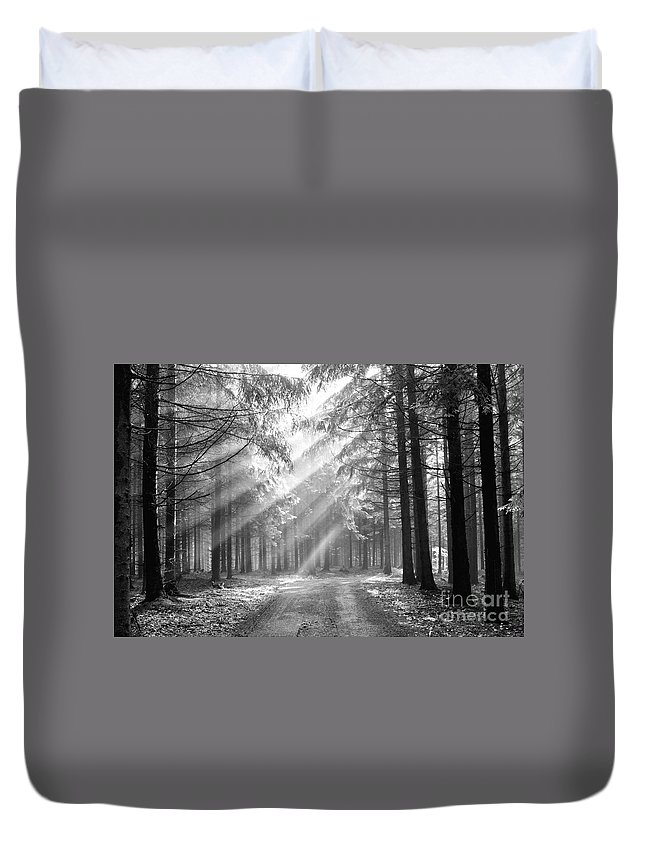 Black And White Duvet Cover featuring the photograph Conifer Forest In Fog by Michal Boubin