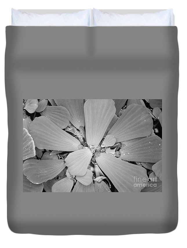 Nature Duvet Cover featuring the photograph Conservatory Nature In Black And White 1 by Carol Groenen