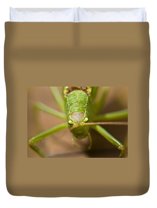 Consternation Duvet Cover featuring the photograph Consternation by Douglas Barnett