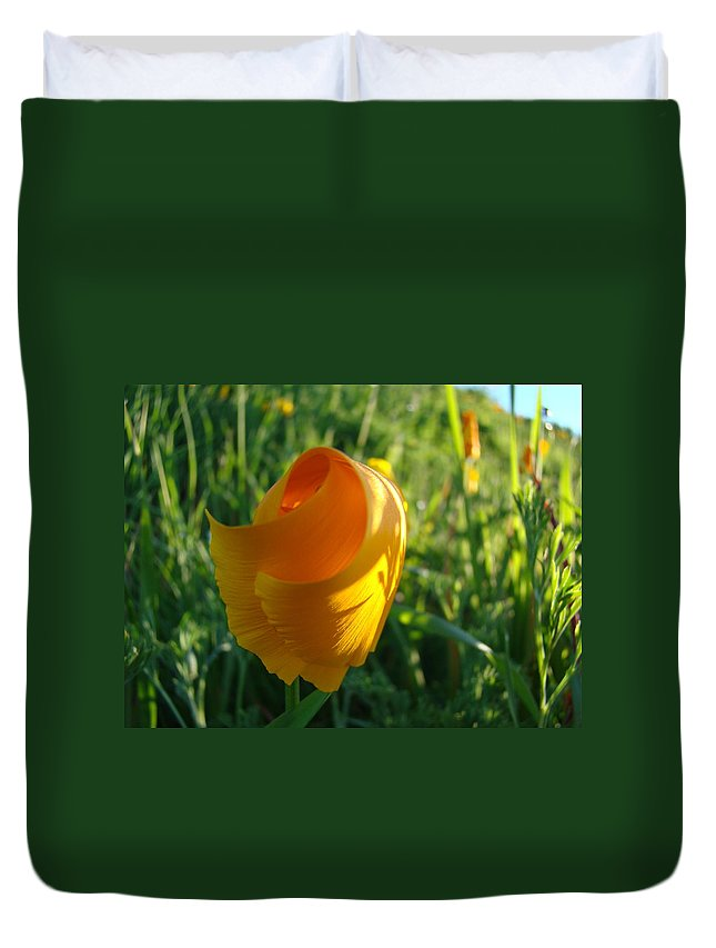 �poppies Artwork� Duvet Cover featuring the photograph Contemporary Orange Poppy Flower Unfolding In Sunlight 10 Baslee Troutman by Baslee Troutman