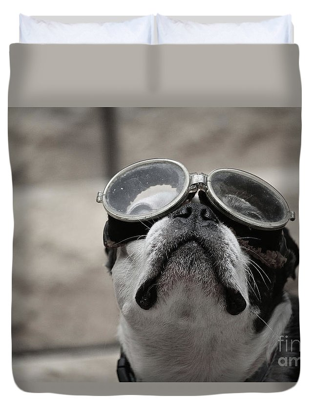 Animal Duvet Cover featuring the photograph Copilot by Susan Herber