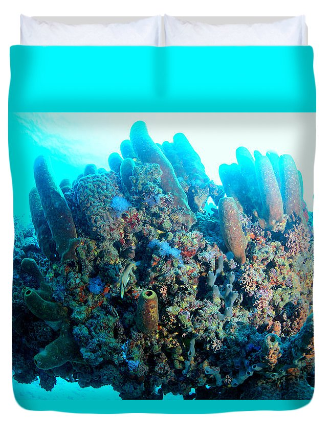 Duvet Cover featuring the photograph Coral Crossbeam by Todd Hummel