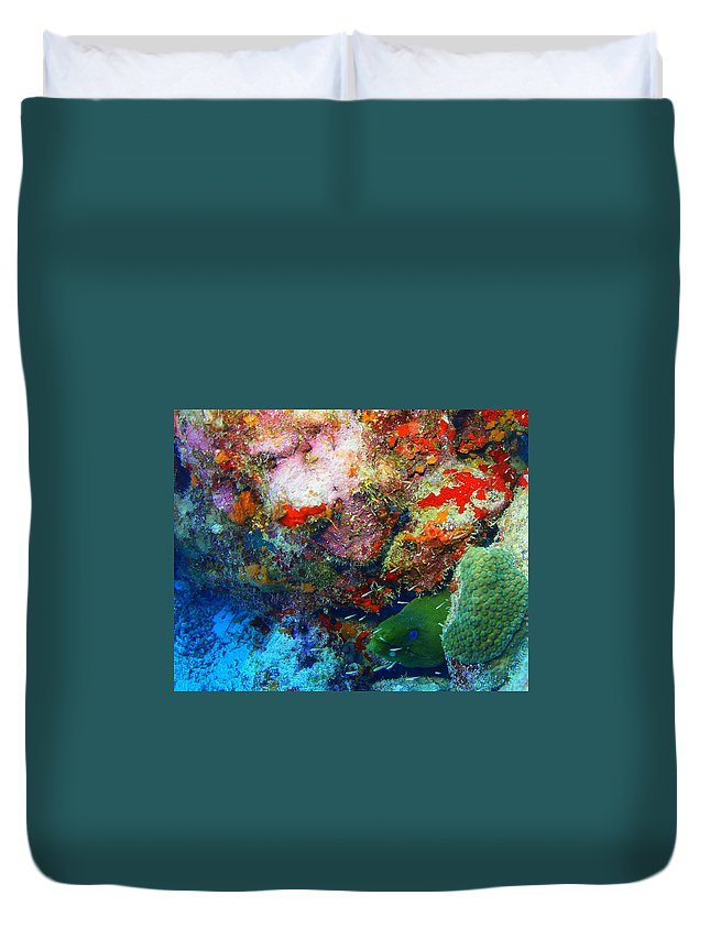 Duvet Cover featuring the photograph Coral Eel by Todd Hummel