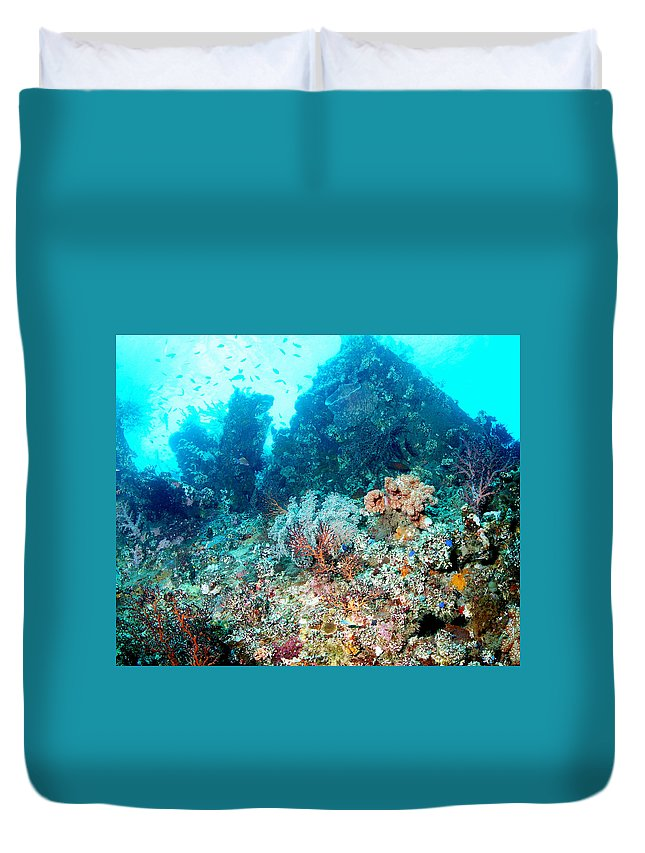 Duvet Cover featuring the photograph Coral Pyramid by Todd Hummel