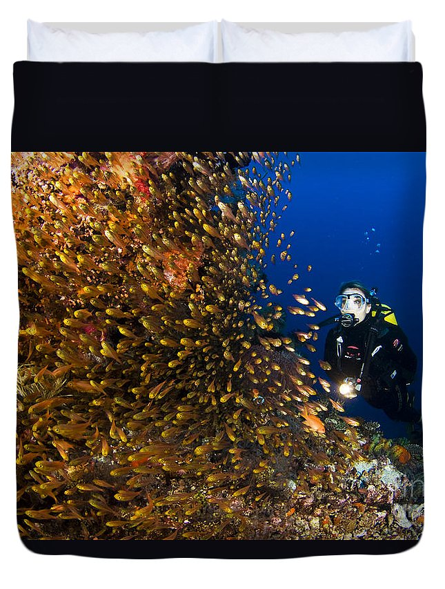 Adventure Duvet Cover featuring the photograph Coral Reef And Diver by Dave Fleetham - Printscapes
