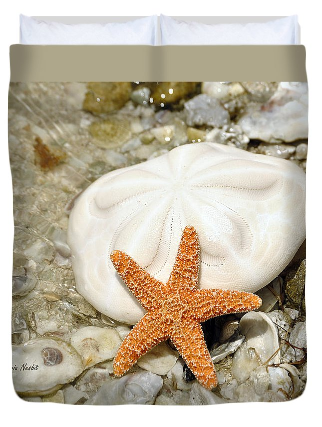 Sea Shells Duvet Cover featuring the photograph Core Of The Reef by Maria Nesbit