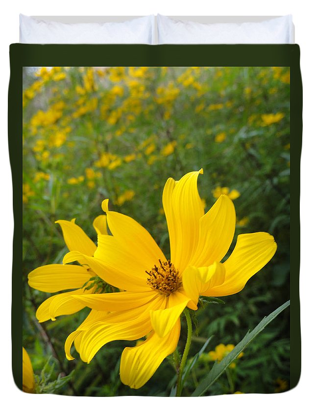 Coreopsis Duvet Cover featuring the photograph Coreopsis by Trish Hale