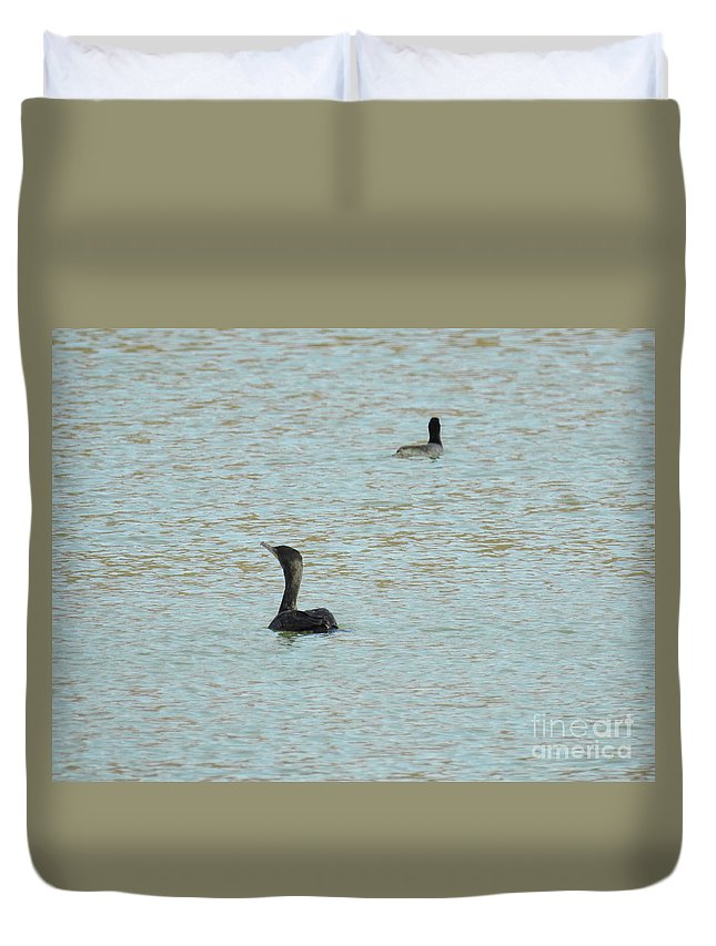 Cormorants On The Lake Duvet Cover featuring the photograph Cormorants On The Lake by Ruth Housley