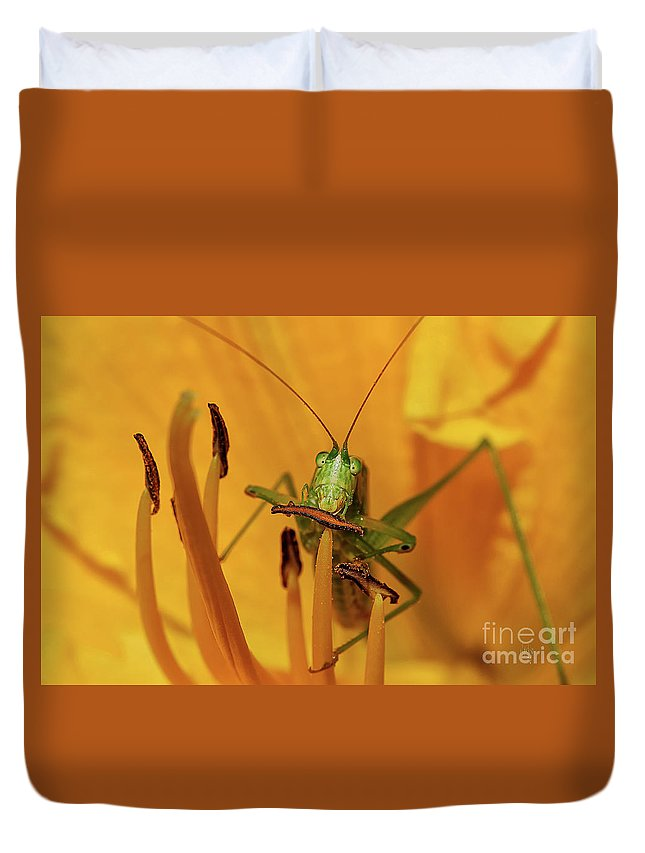 Bug Duvet Cover featuring the photograph Corn On The Cob by Lois Bryan