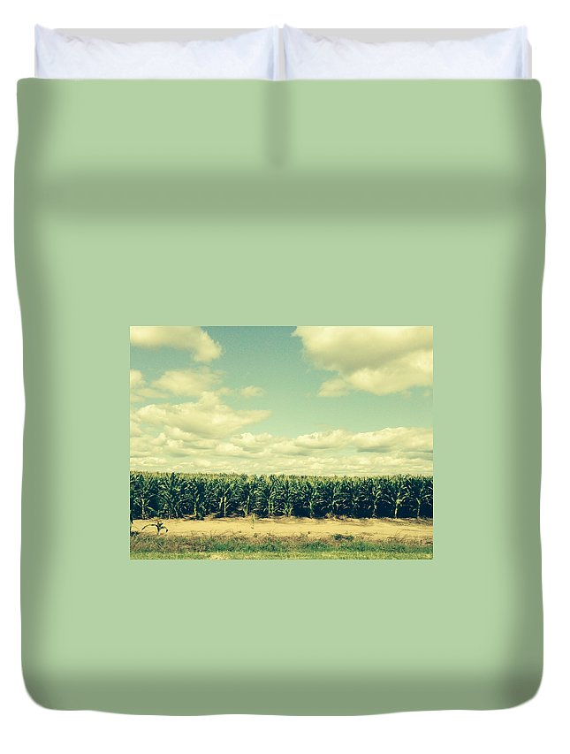 Cornfield In Missouri Duvet Cover featuring the painting Cornfield In Missouri by Randy Imler