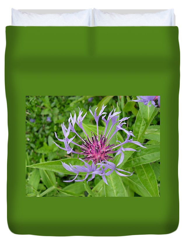 Cornflower Duvet Cover featuring the photograph Cornflower by Peggy King