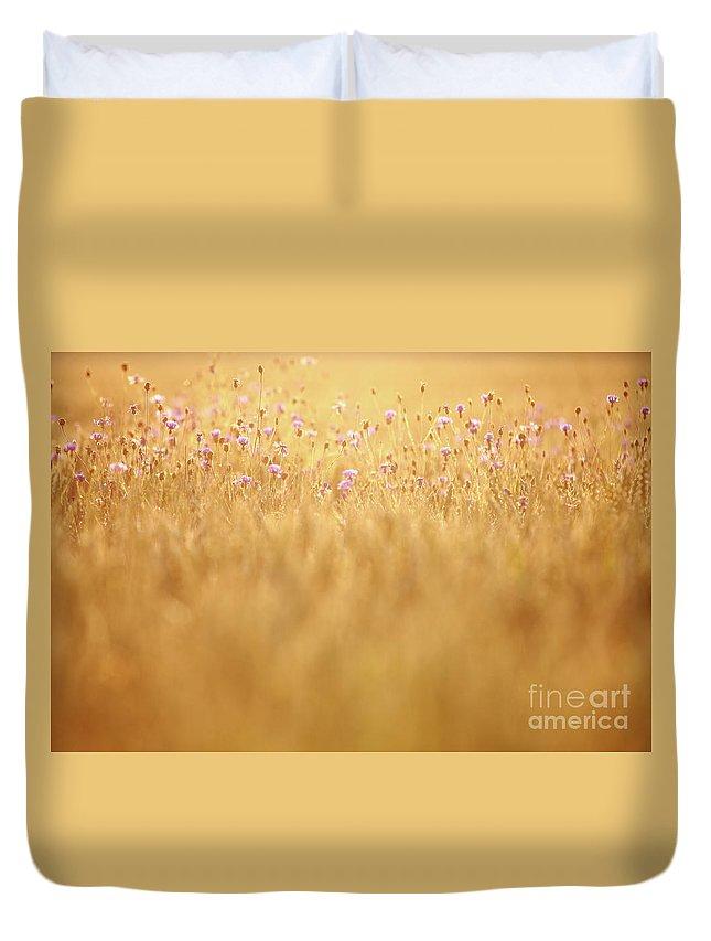 Cornflower Duvet Cover featuring the photograph Cornflowers by Jana Behr