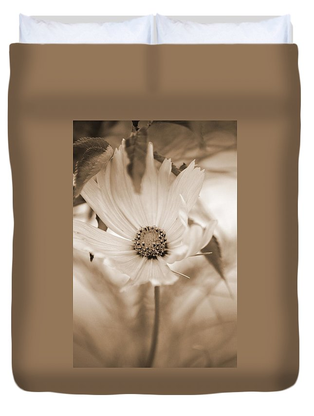 Flower Duvet Cover featuring the photograph Cosmo by Donna Bentley