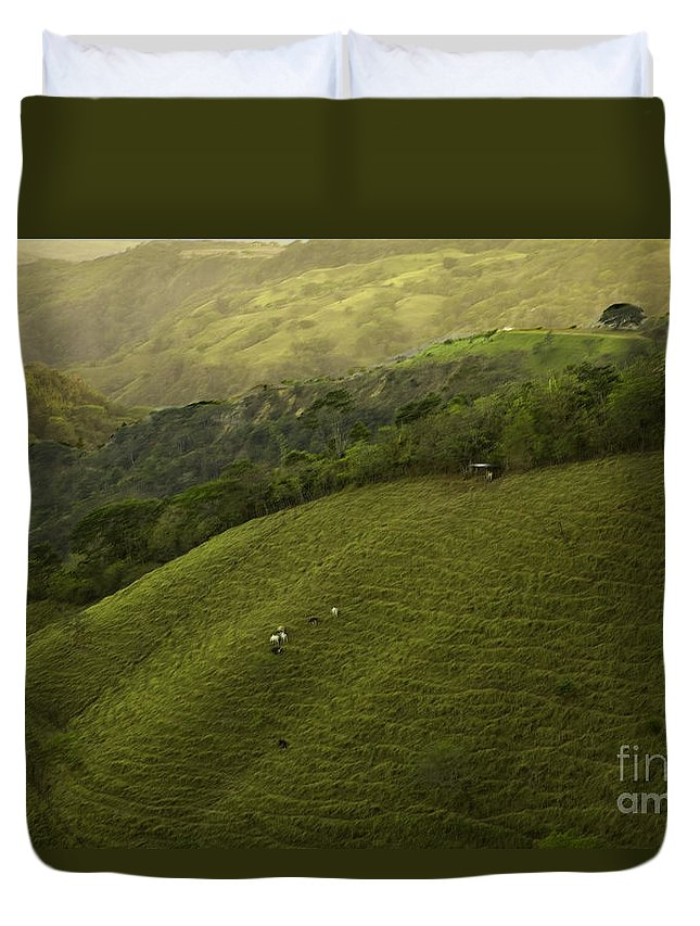 Pasture Duvet Cover featuring the photograph Costa Rica Pasture by Madeline Ellis