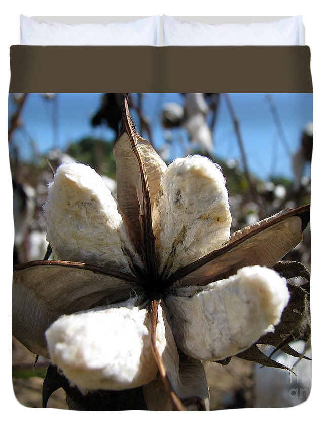 Cotton Duvet Cover featuring the photograph Cotton by Amanda Barcon