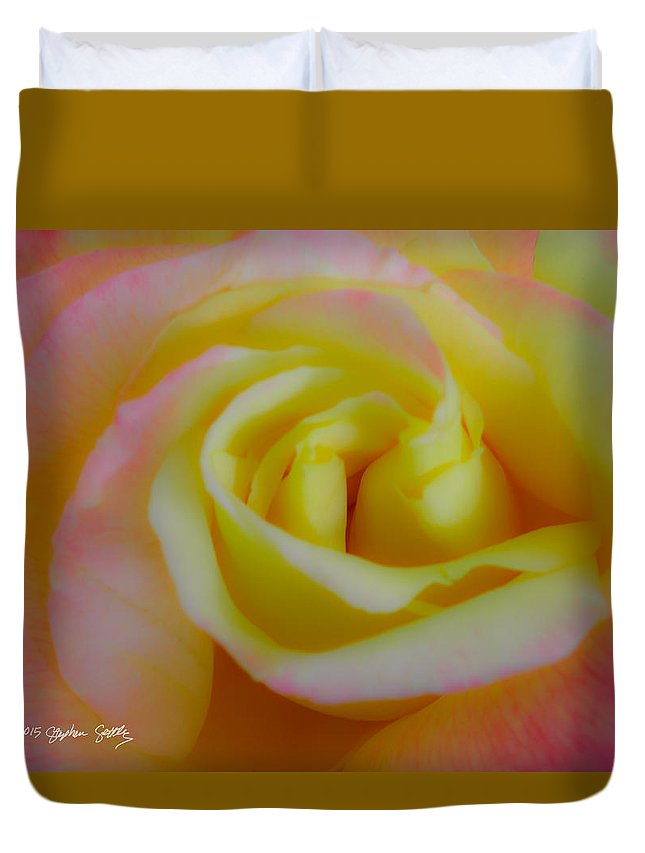 Rose Duvet Cover featuring the photograph Cotton Candy Roses by Stephen Settles