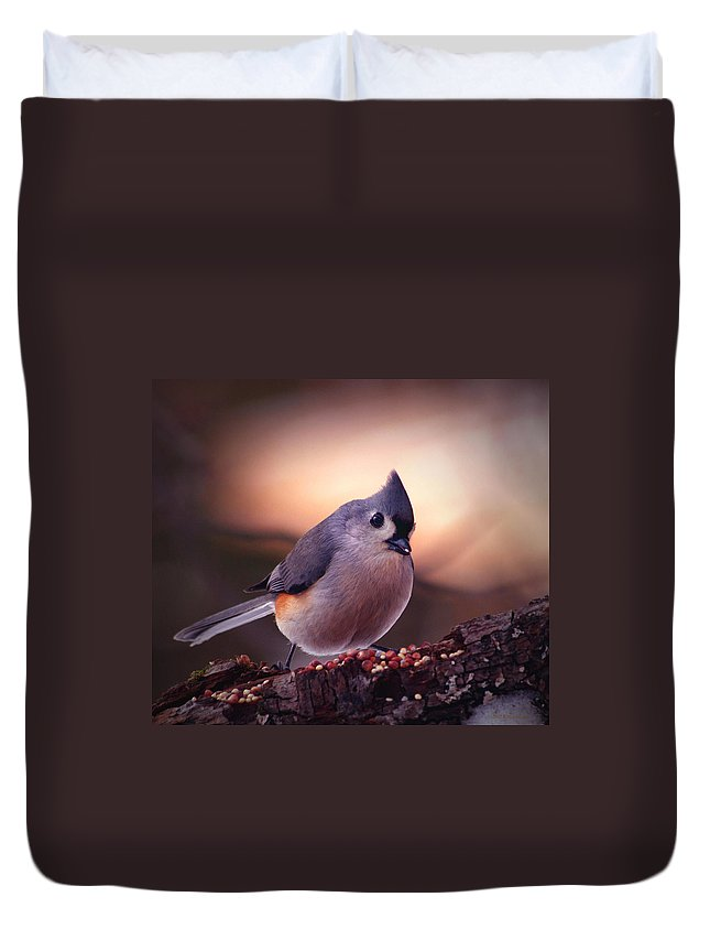 Birds Duvet Cover featuring the photograph Country Mouse... by Arthur Miller
