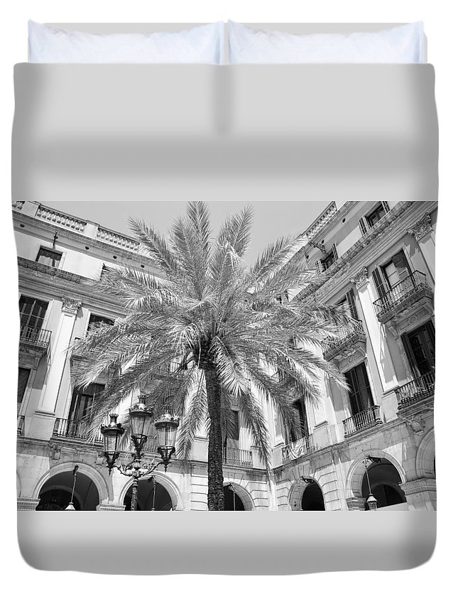 Courtyard Duvet Cover featuring the photograph Courtyard Palm by David Coleman