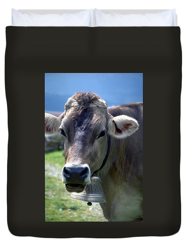 Cow Duvet Cover featuring the photograph Cow by Flavia Westerwelle