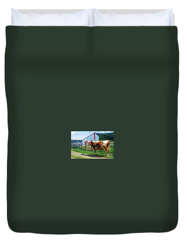 Photograph Cow Sheep Barn Field Newfoundland Duvet Cover featuring the photograph Cow Sheep And Bicycle by Seon-Jeong Kim