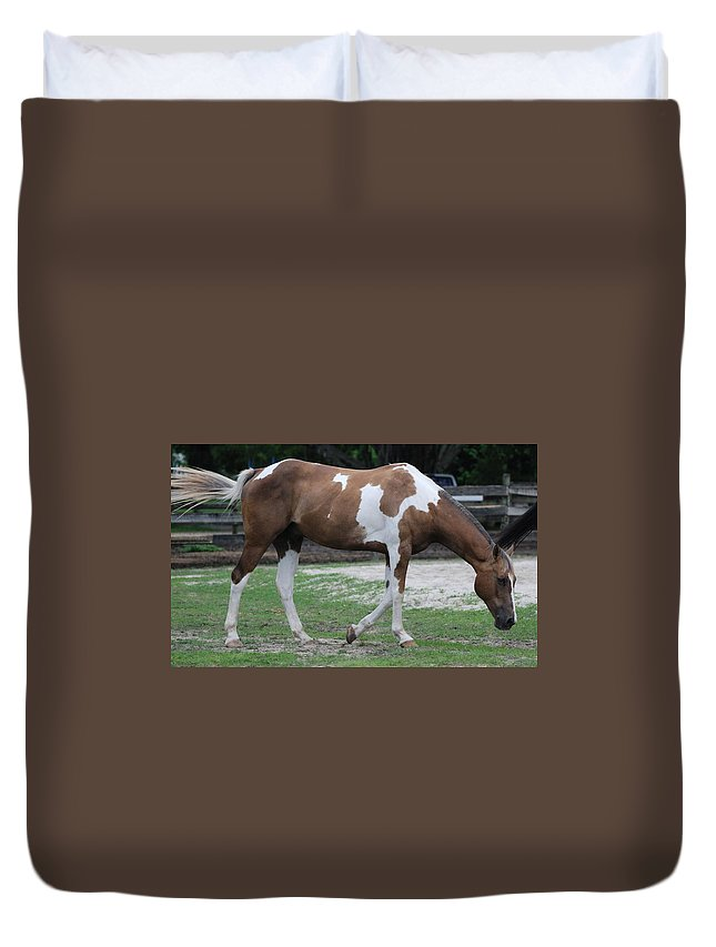 Horse Duvet Cover featuring the photograph Cow Spotted Horse by Rob Hans