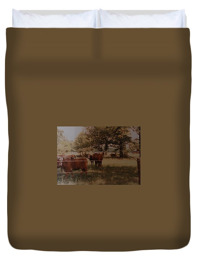Cows Duvet Cover featuring the photograph Cows by Rob Hans