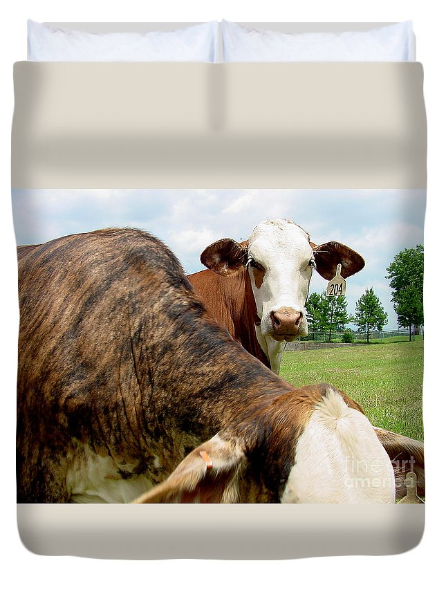 Cow Duvet Cover featuring the photograph Cows8938 by Gary Gingrich Galleries