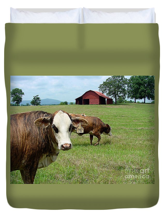 Cow Duvet Cover featuring the photograph Cows8986 by Gary Gingrich Galleries