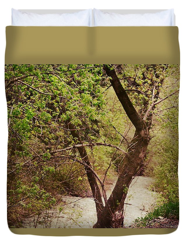 Dreamy Duvet Cover featuring the photograph Cozy Stream in American Fork Canyon Utah by Colleen Cornelius