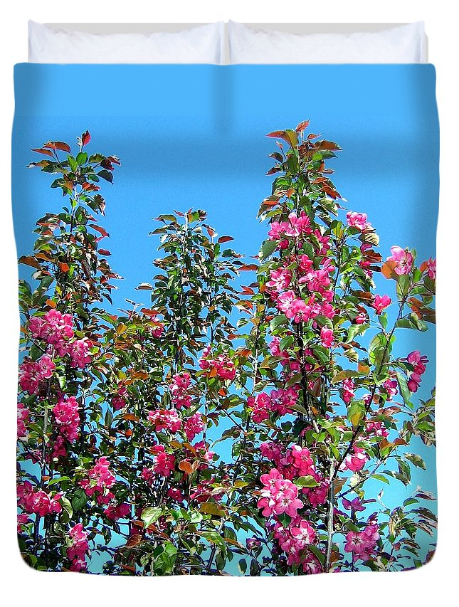 Crab Apple Blossoms Duvet Cover featuring the photograph Crab Apple Blossoms by Will Borden