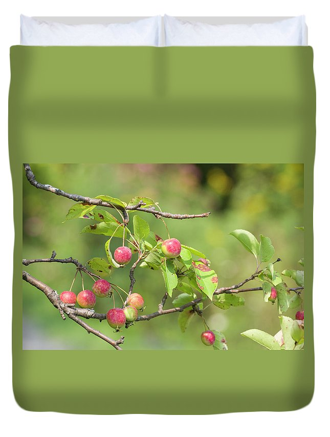 Blossoms Duvet Cover featuring the photograph Crab Apple Fruit by Bob Corson