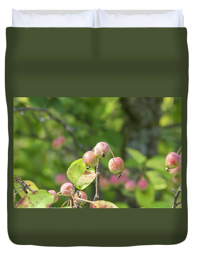 Blossoms Duvet Cover featuring the photograph Crab Apples by Bob Corson